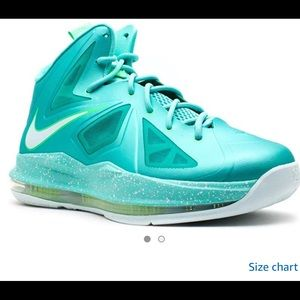 """Lebron X (GS) """"Easter"""" Girls Basketball Shoes"""